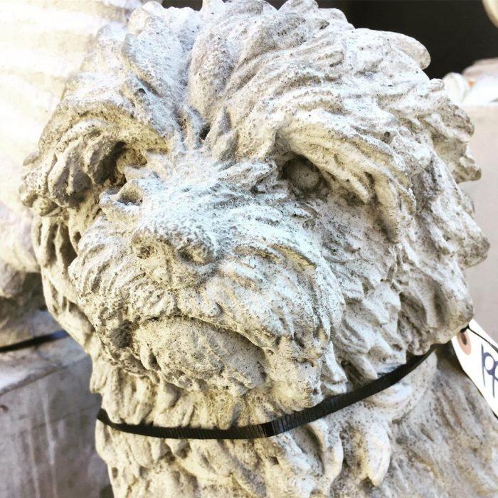 statue-dog-old-farm-garden-stone-koksilah-duncan-victoria-bc-1