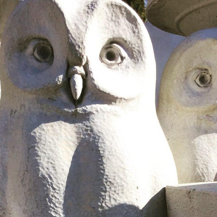 statue-owl-old-farm-garden-stone-koksilah-duncan-victoria-bc-1